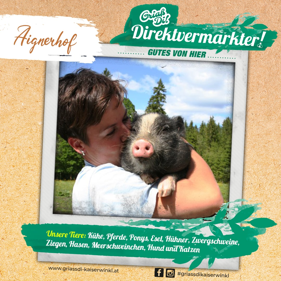 Direktvermarkter-Fotostory-Aignerhof-4-Unsere-Tiere-min