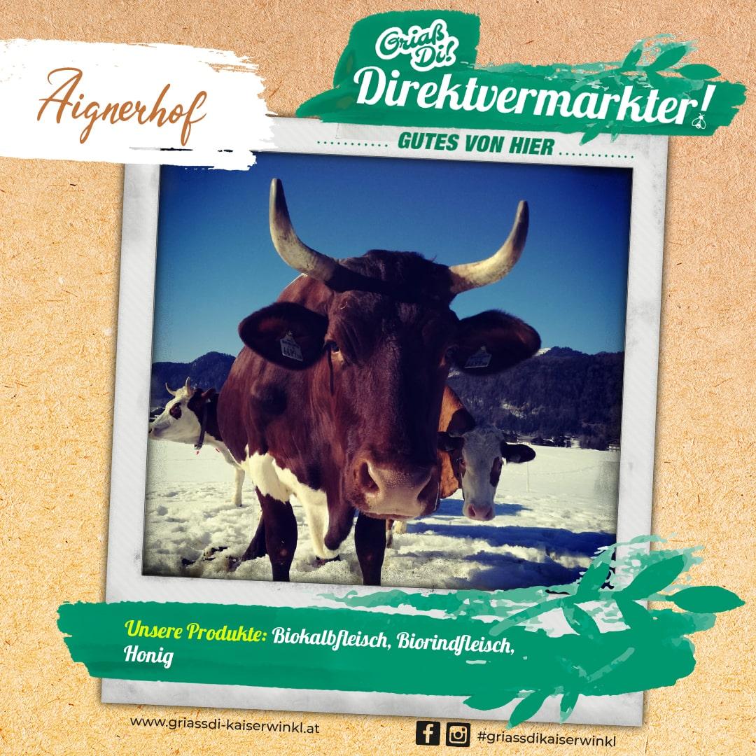 Direktvermarkter-Fotostory-Aignerhof-6-Unsere-Produkte-min