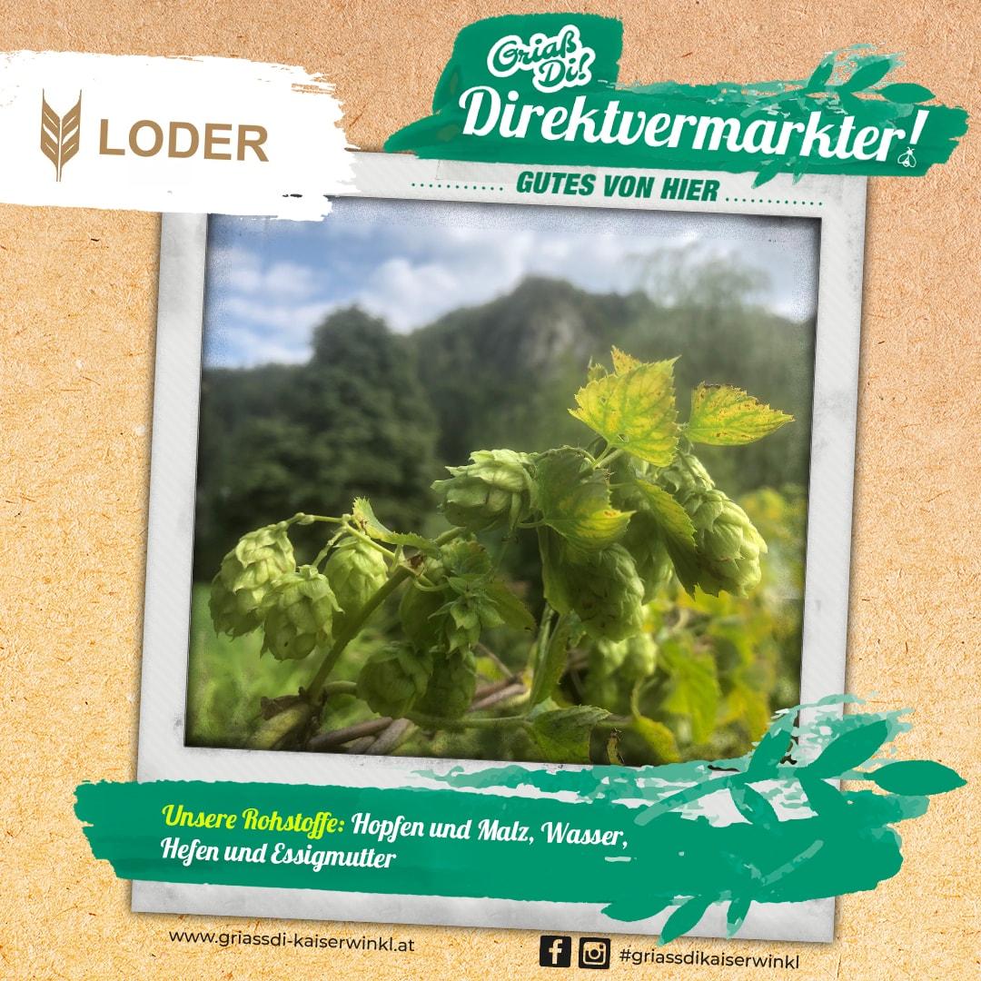 Direktvermarkter-Fotostory-Loder-3-Unsere-Rohstoffe-min