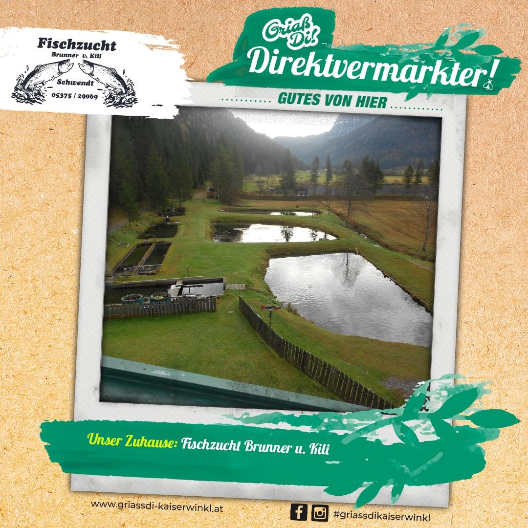 Direktvermarkter-Fotostory-Brunner-1-Unser-Zuhause-min