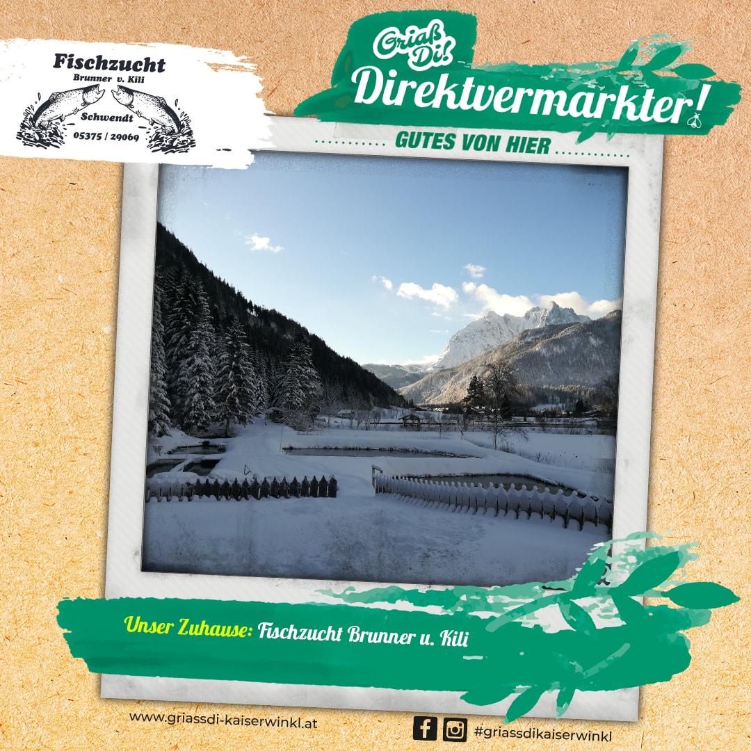 Direktvermarkter-Fotostory-Brunner-2-Unser-Zuhause-min