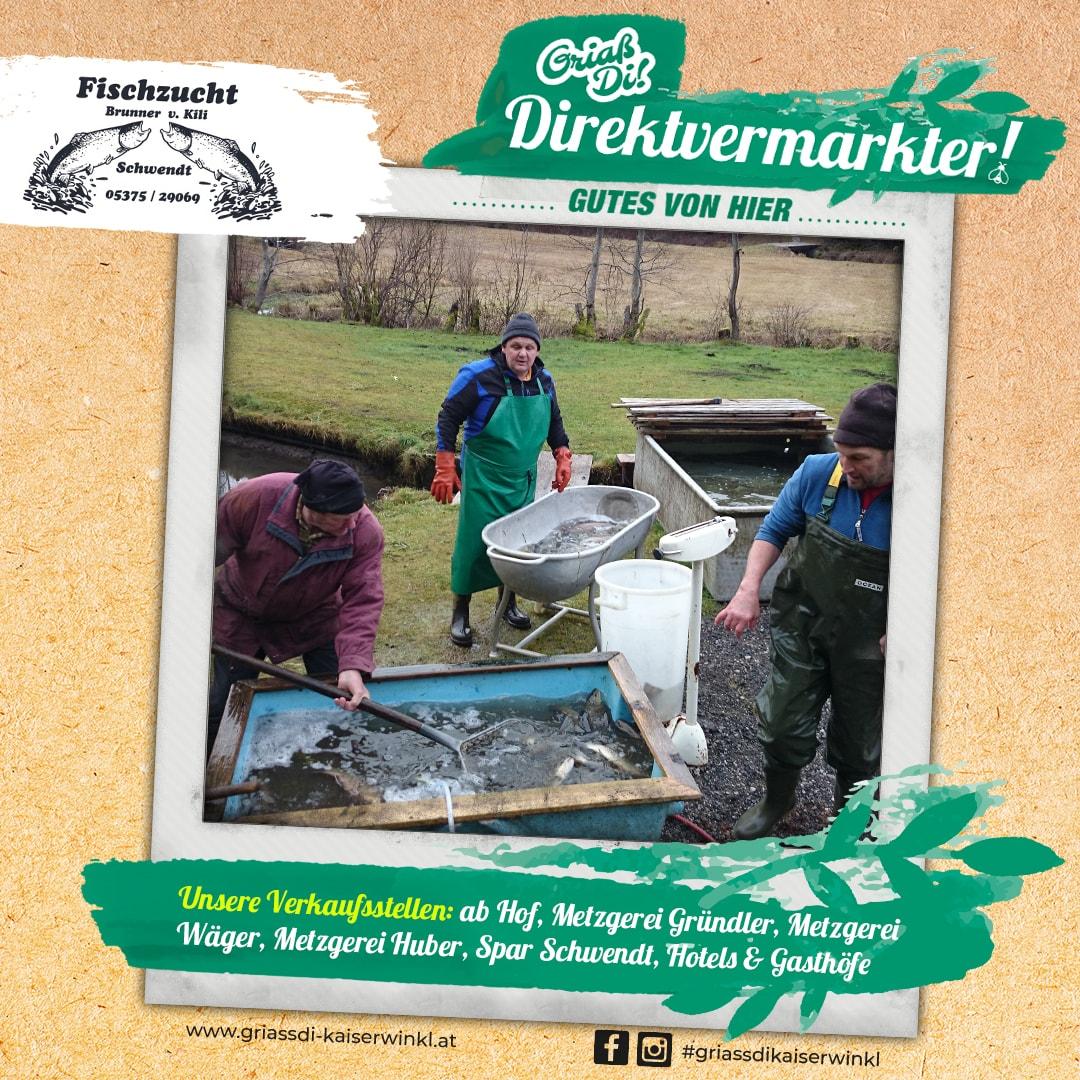Direktvermarkter-Fotostory-Brunner-8-Unsere-Verkaufsstellen-min