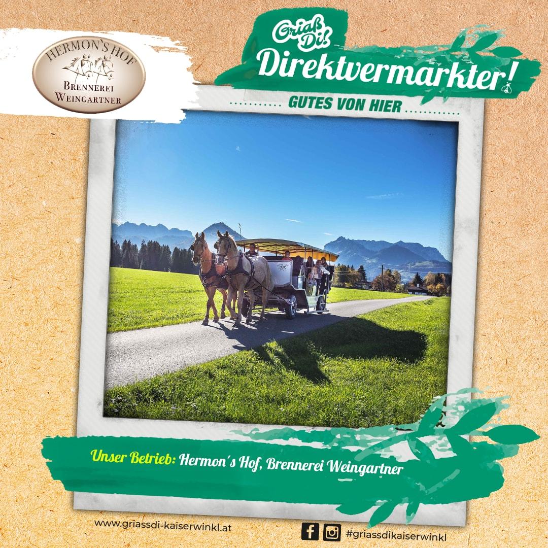 Direktvermarkter-Fotostory-Hermonshof-1-Unser-Betrieb-min