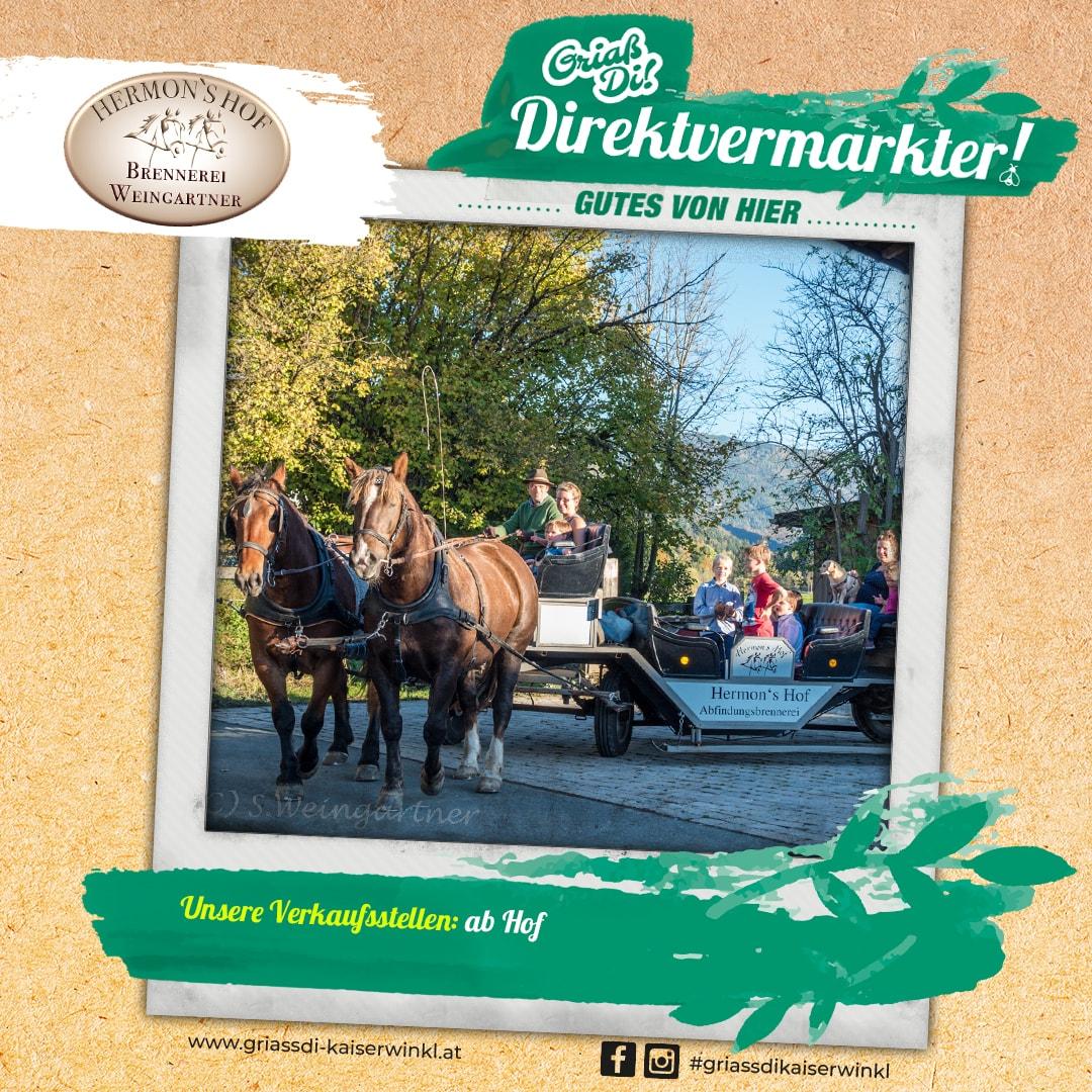 Direktvermarkter-Fotostory-Hermonshof-2-Unser-Betrieb-min