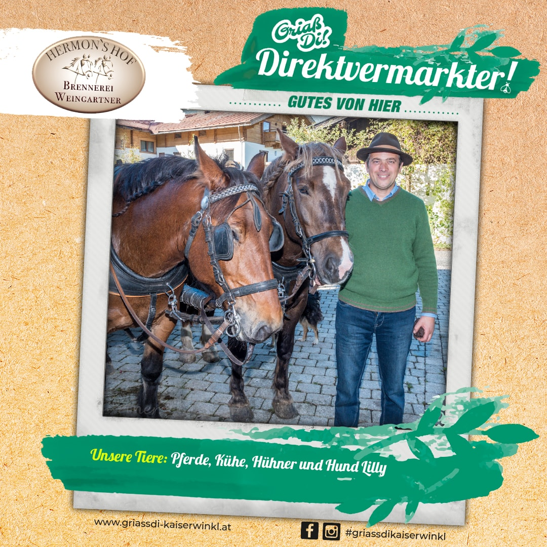 Direktvermarkter-Fotostory-Hermonshof-4-Unsere-Tiere-min
