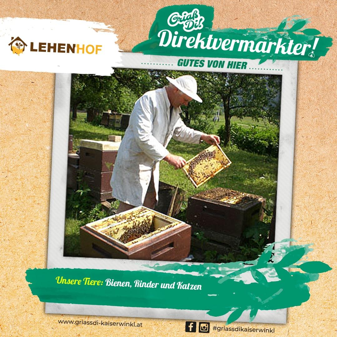 Direktvermarkter-Fotostory-Lehenhof-3a-Unsere-Tiere-min