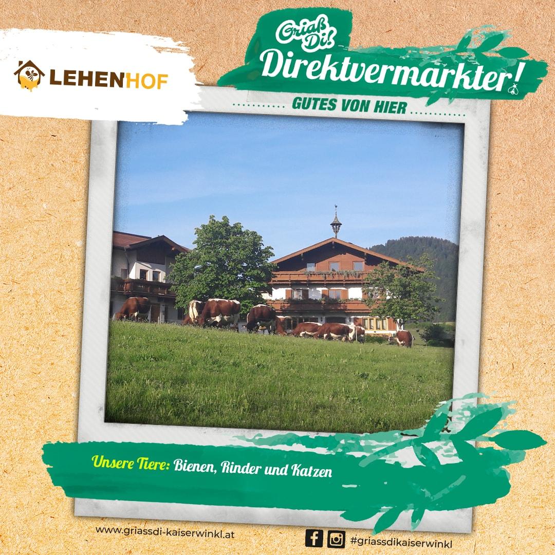Direktvermarkter-Fotostory-Lehenhof-5-Unsere-Tiere-min